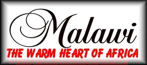 Warm Heart Logo