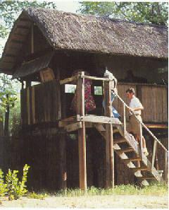 Malawi Pic